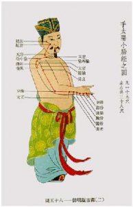 """Méridien de l'Intestin Grêle """"Shou Tai Yang Xiao Chang Jing"""""""
