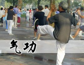 Formation Qi Gong 2017-2018 Toulouse